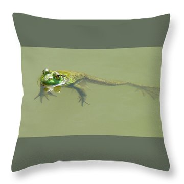 Up Periscope Throw Pillow