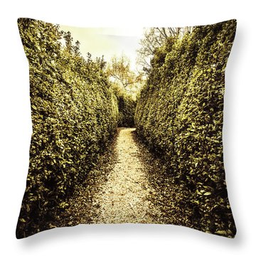 Up The Garden Path Throw Pillow