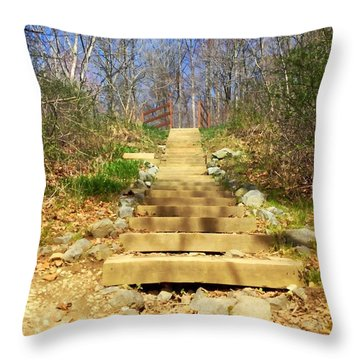 Up The Steps Throw Pillow