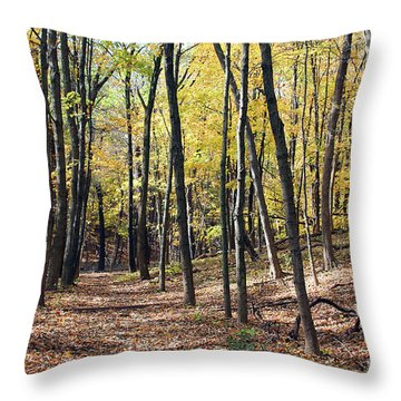 Up The Woodland Trail Throw Pillow