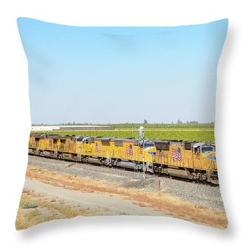 Throw Pillow featuring the photograph Up4912 by Jim Thompson