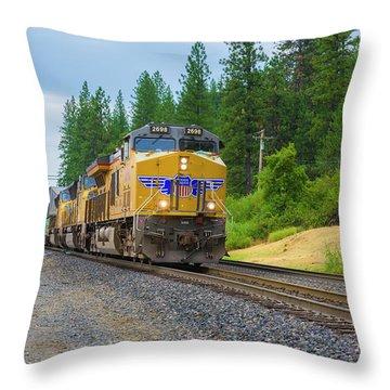 Up5698 Throw Pillow