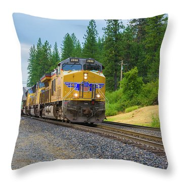 Throw Pillow featuring the photograph Up5698 by Jim Thompson