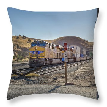 Throw Pillow featuring the photograph Up7472 by Jim Thompson