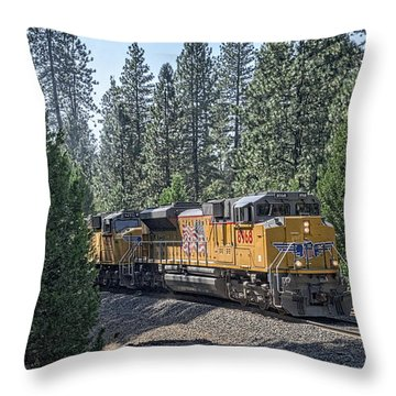 Throw Pillow featuring the photograph Up8968 by Jim Thompson