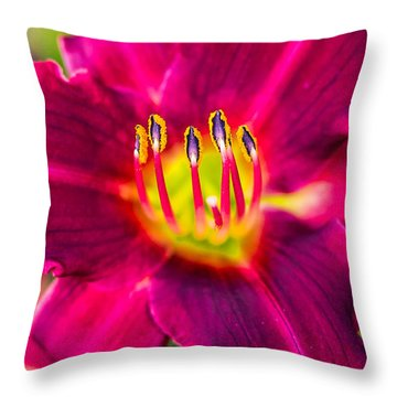 Upclose And Purple Throw Pillow