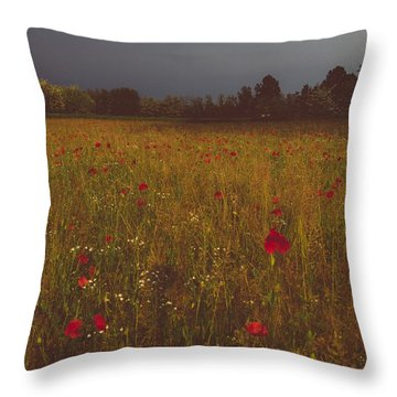 Upcoming Thunderstorm Throw Pillow by Cesare Bargiggia