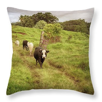 Upcountry Ranch Throw Pillow