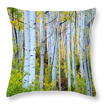 Uphill Forest Throw Pillow by The Forests Edge Photography - Diane Sandoval