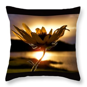 Uplifting Throw Pillow