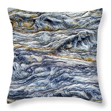 Upon The Seashore Throw Pillow