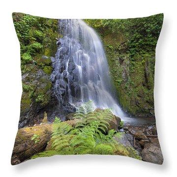 Upper Mccord Creek Falls Throw Pillow by David Gn