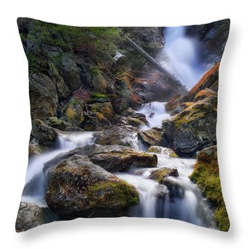 Throw Pillow featuring the photograph Upper Race Brook Falls 2017 by Bill Wakeley