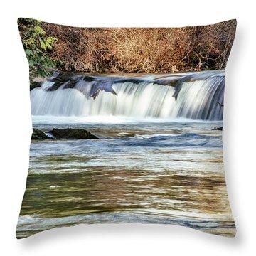 Upper Whatcom Falls Throw Pillow