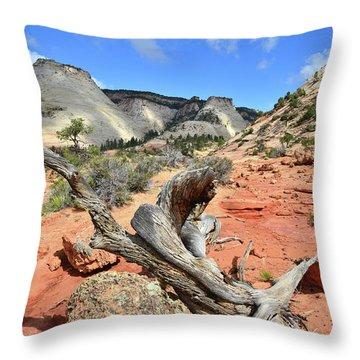 Upper Zion Throw Pillow