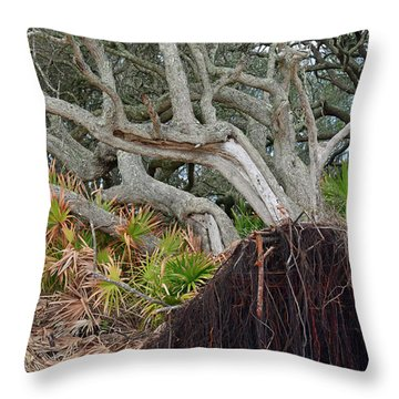 Uprooted Throw Pillow by Bruce Gourley