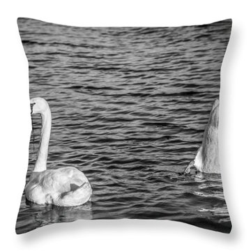Throw Pillow featuring the photograph Ups And Downs by Gary Gillette