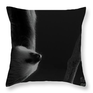 Upside Down Sloth Throw Pillow