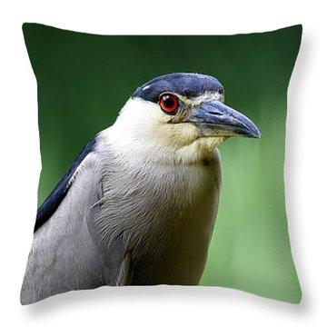 Upstanding Heron Throw Pillow
