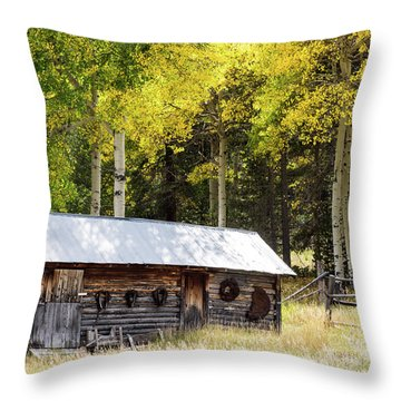 Uptop A Colorado Ghost Town Throw Pillow by Nadja Rider