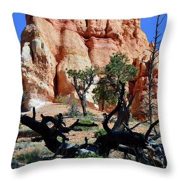 Throw Pillow featuring the photograph Upward by Bruce Gourley