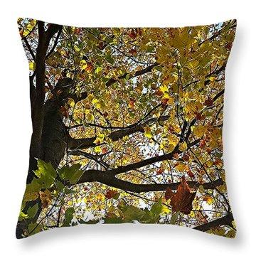 Upward Throw Pillow by Jana E Provenzano