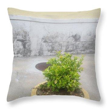 Urban Landscape Throw Pillow