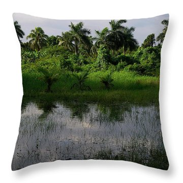 Urban Swamp Throw Pillow