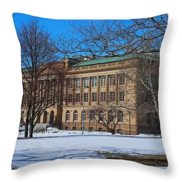Us Court House And Custom House Throw Pillow