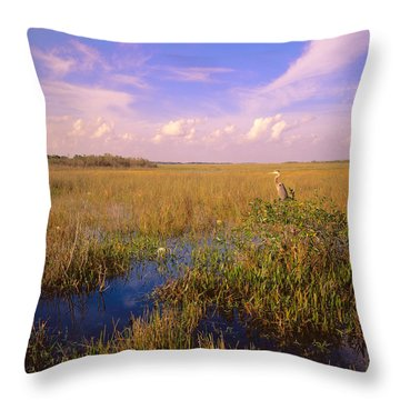 Usa, Florida, Everglades National Park Throw Pillow by Panoramic Images