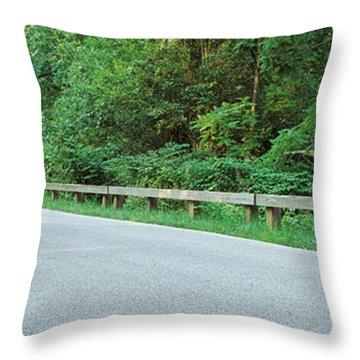 Usa, Maryland, Kingsville Area, View Throw Pillow