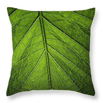 Throw Pillow featuring the photograph Usbg Leaf One by Kevin Blackburn