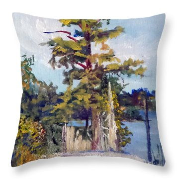 Throw Pillow featuring the painting Used To Be by Jim Phillips