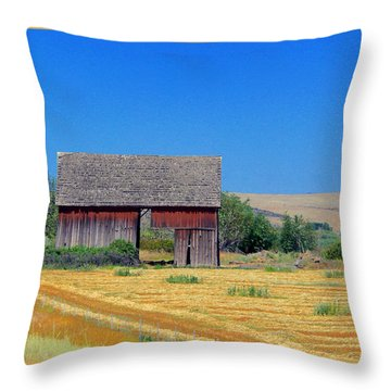 Used To Be Red Barn Throw Pillow