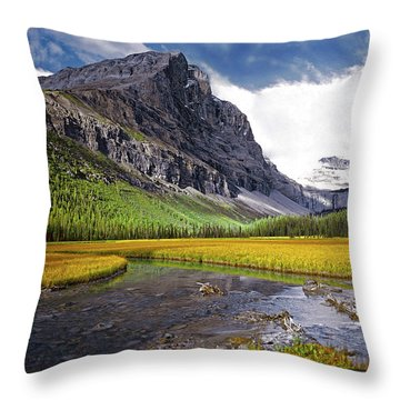 User Friendly Throw Pillow