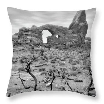 Utah Outback 37 Throw Pillow by Mike McGlothlen
