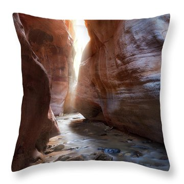 Utah's Underworld Throw Pillow