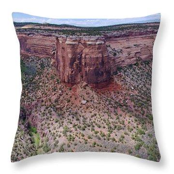 Ute Canyon Throw Pillow