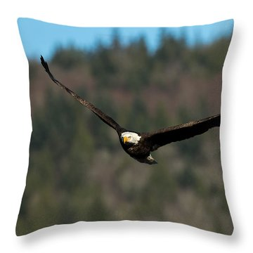 'v' Wings Throw Pillow