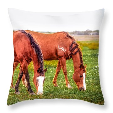 Throw Pillow featuring the photograph V90 Over For Dinner by Melinda Ledsome