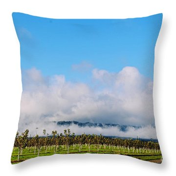 Vacaville Orchard Throw Pillow