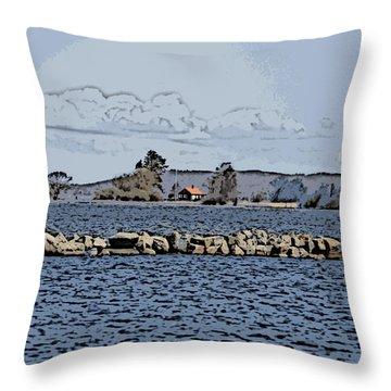 Vaennern Lake Throw Pillow