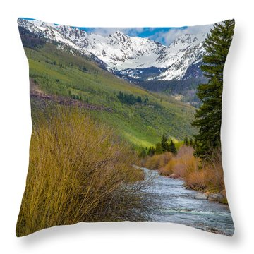 Vail Stream Throw Pillow by Aaron Spong