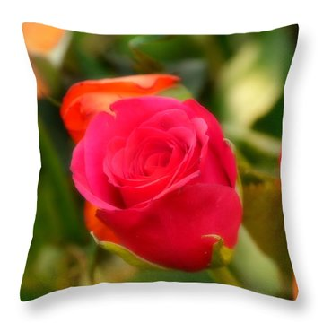 Valentines Day Throw Pillow by Bernd Hau