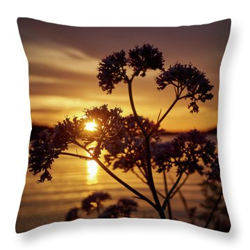Valerian Sunset Throw Pillow