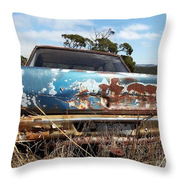 Throw Pillow featuring the photograph Valiant View by Stephen Mitchell