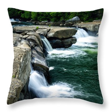 Using The River Throw Pillows