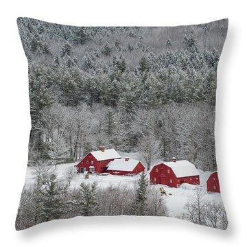 Valley Farm In Winter Throw Pillow