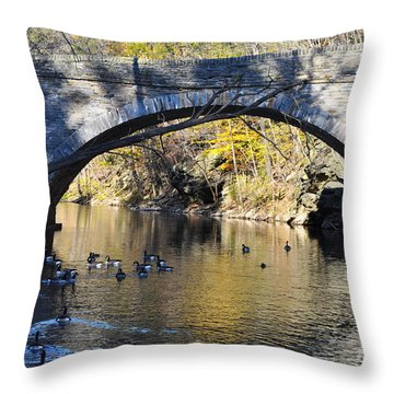 Valley Green Bridge Throw Pillow by Bill Cannon
