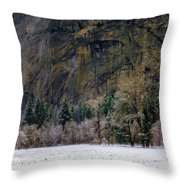 Valley Morning Throw Pillow